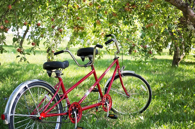 Tandem Bikes in Orchard