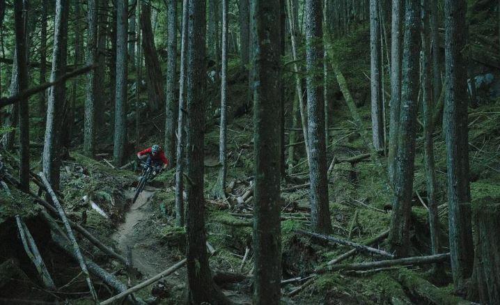 Seattle Bike Trails