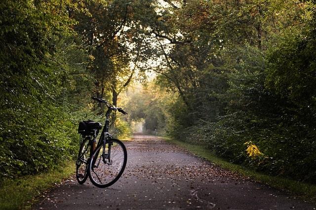 Bike Trails Near Seattle