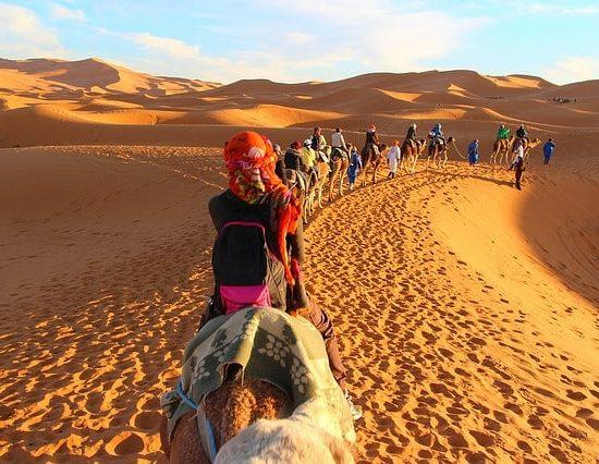 Morocco camel caravan