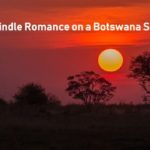 Botswana Safri