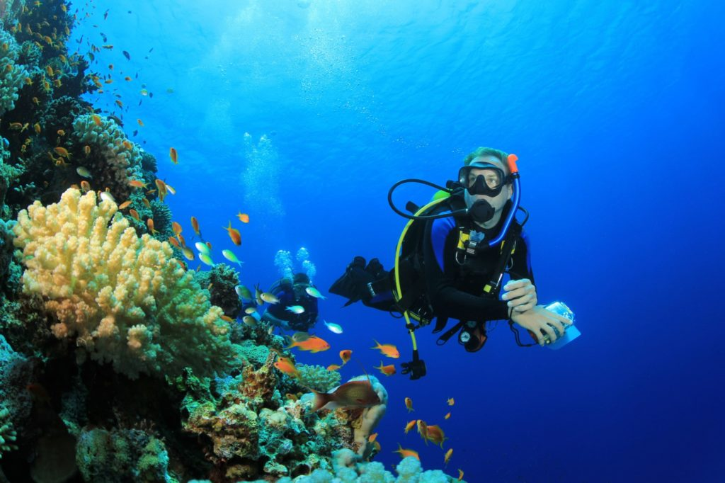 Essential Scuba Diving Tips