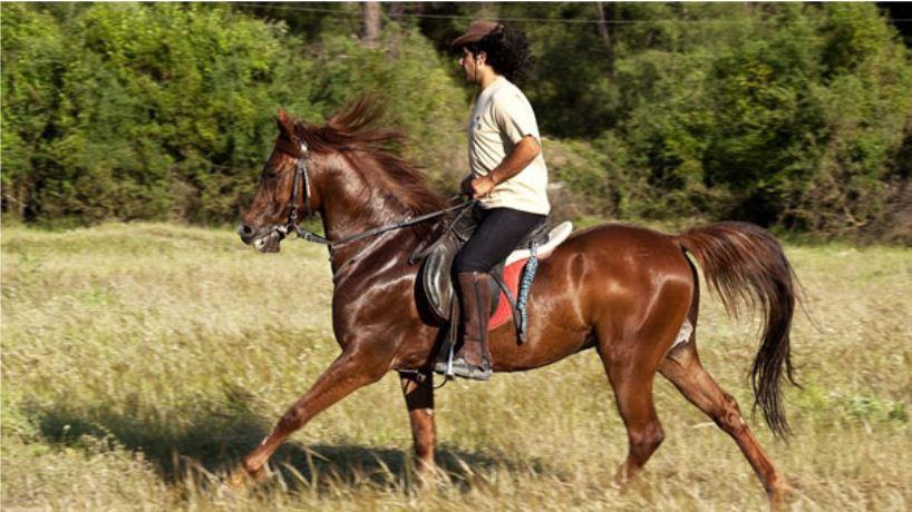 Turkey Horseback Riding Adventure