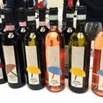 Abruzzo Wine Italy