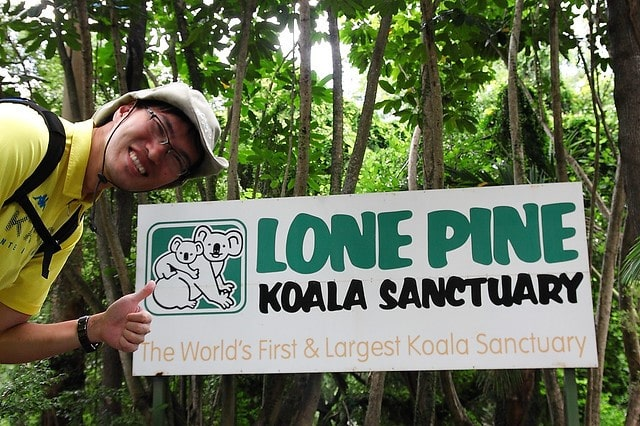 Lone Pine Koala Sanctuary Bisbane Australia