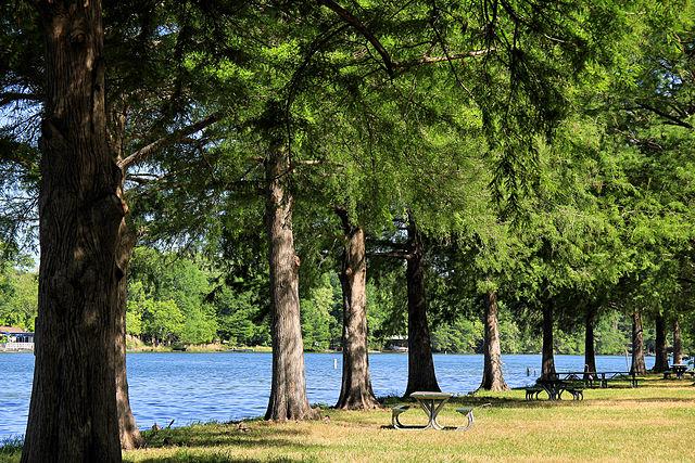 Emma Long Park Austin Texas
