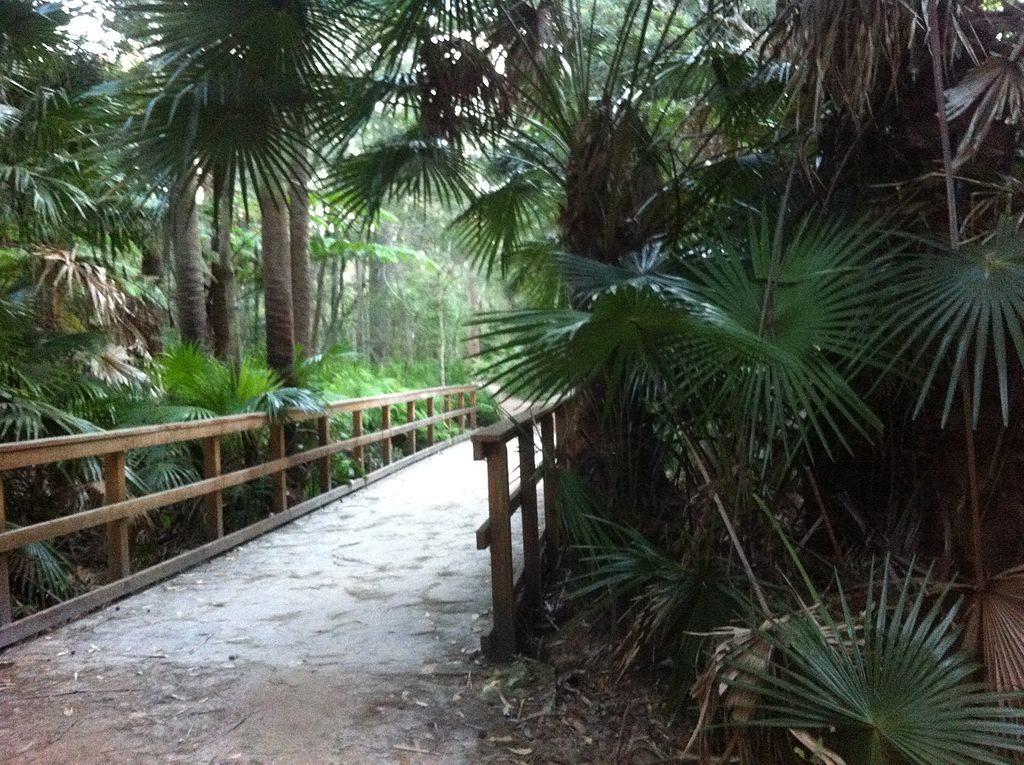 Narrabeen Lagoon Trail Sydney
