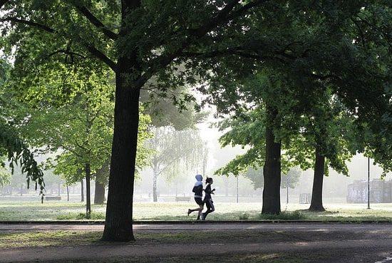 Hike, Bike & Jog Syndey