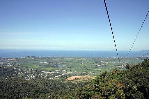 Cairns Skyrail Rainforest Experience