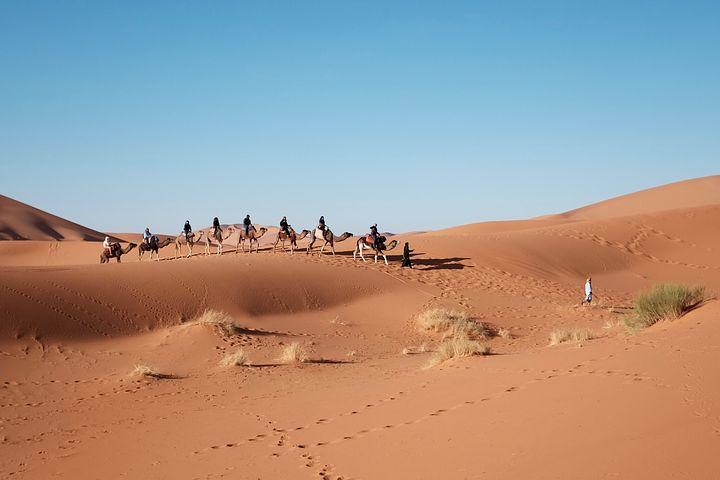 Sahara Desert Caravan Tour