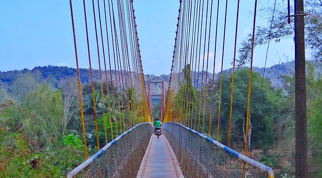 Hanging Bridge India