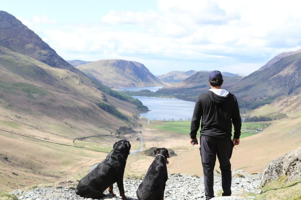 Man and Dogs with valley view
