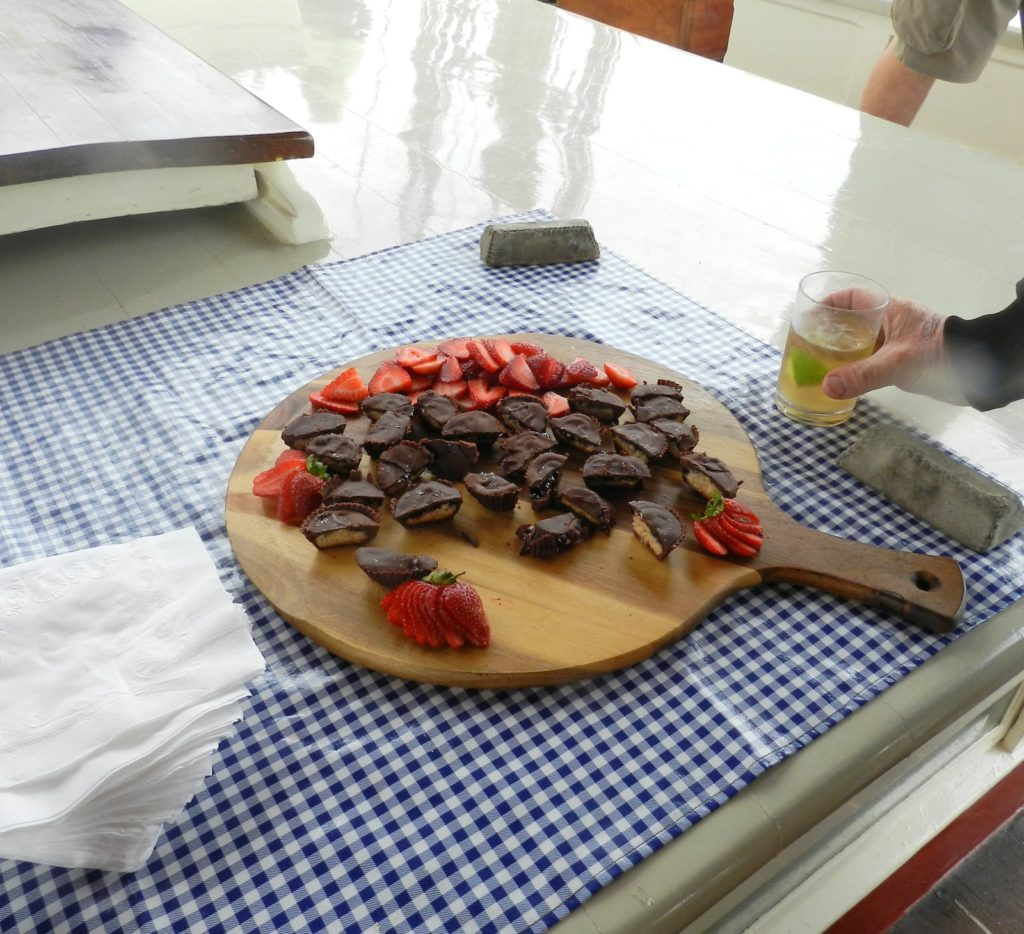 chocloate preanutbutter bites