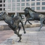 Things To Do Irving Texas