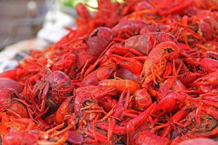New Orleans Crawfish Festival
