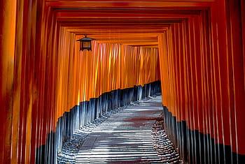 Torri Gates Japan