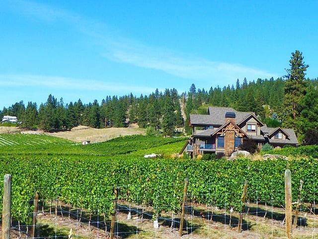 Canada Wine Regions