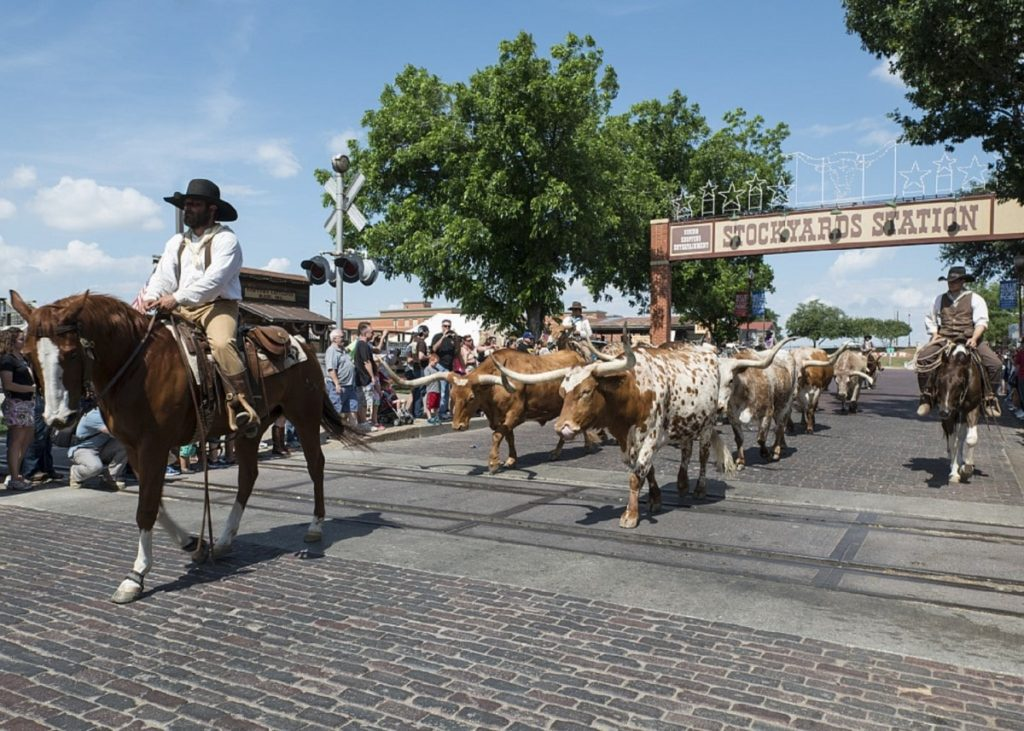 Annual Texas Festivals