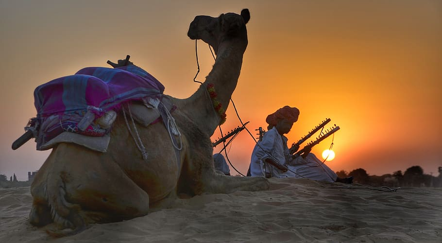 Sand Dunes Rajasthan India at Sunset