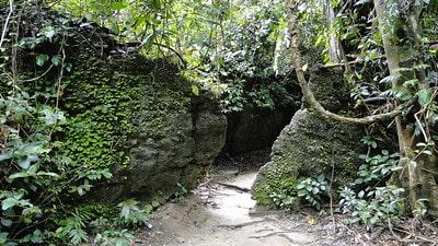 Limestone Caves Andaman Islands
