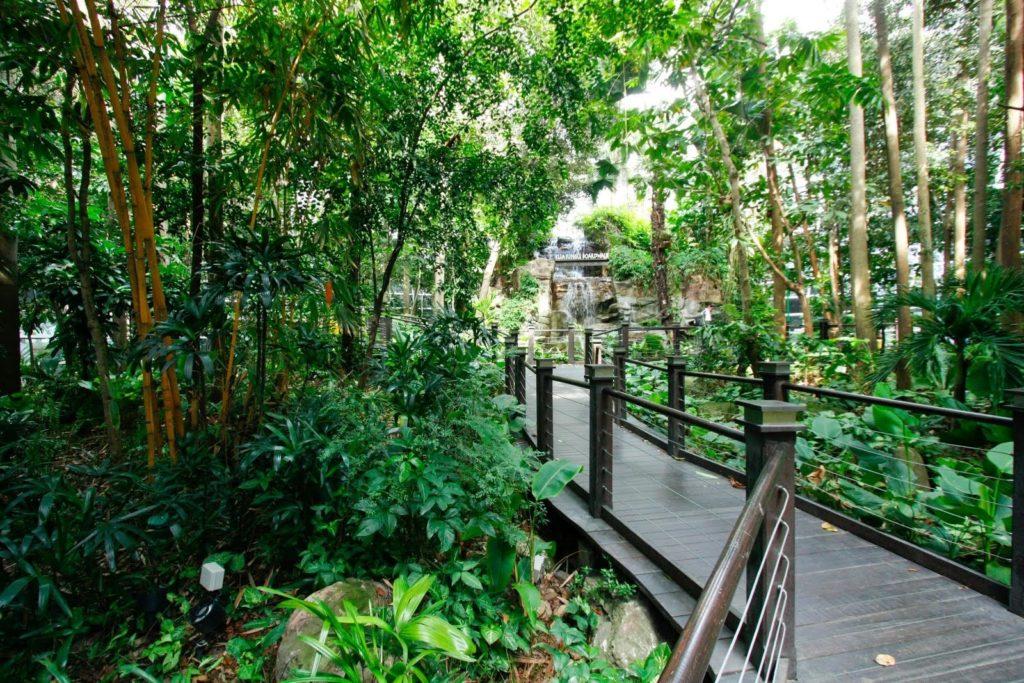 KLIA Rainforest Boardwalk