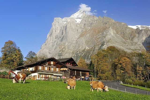 Grindelwald Hiking Tips