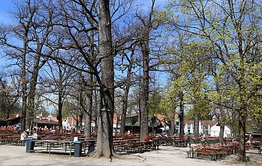 Hirschgarten Beer Garden Munich