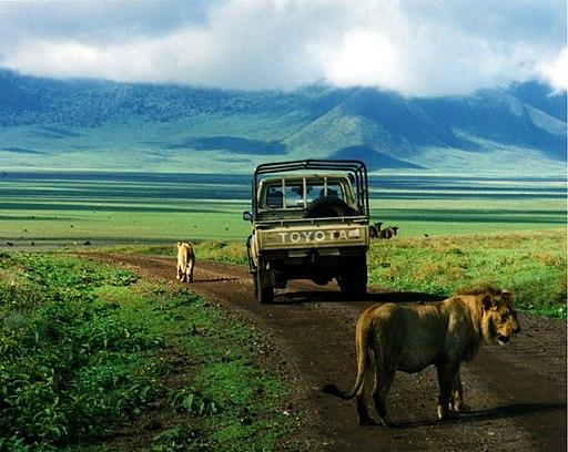 Ngorongoro National Reserve Tanzania
