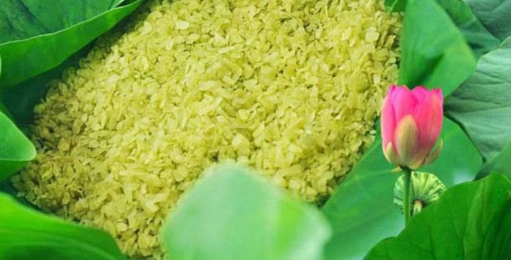 Green Rice Vietnam