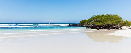 Tortuga Beach, Galapagos Islands