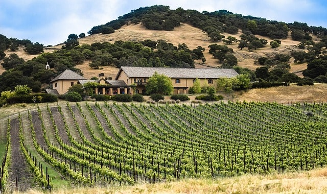 Napa Valley California