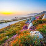 California Scenic Highway