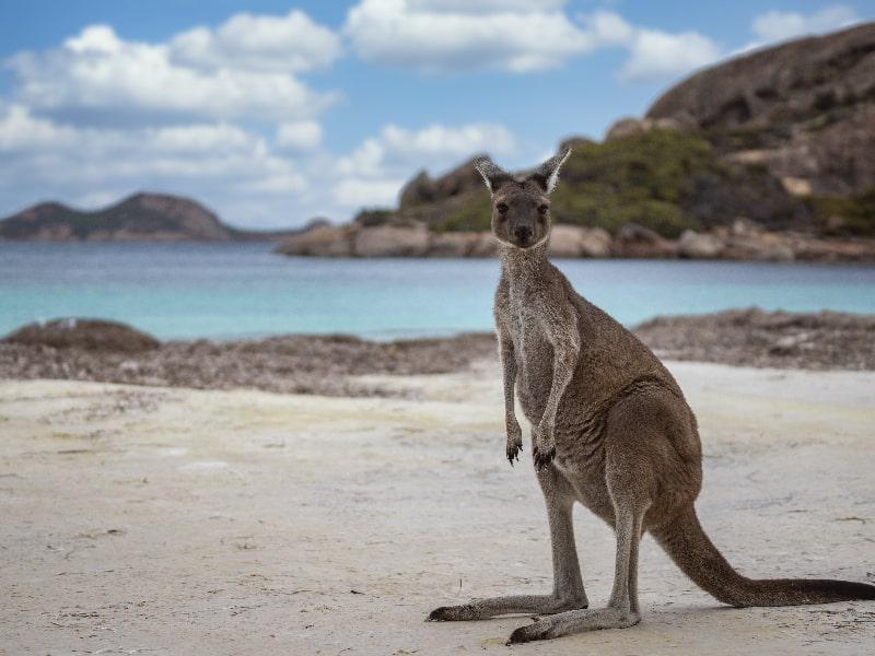 Cape Le Grand Australia