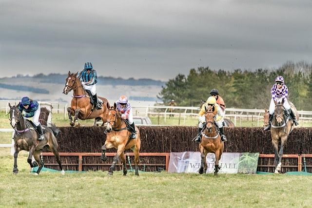 Steeplechase Horse Race