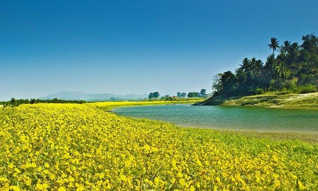 Assam India Travel Tips