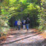 Smoky Mountains Family Reunion
