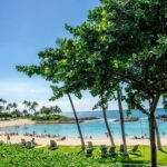 Oahu Hawaii Travel Tips
