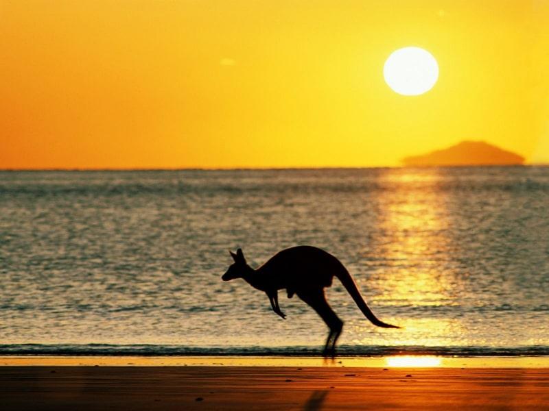 Adelaide Travel Tips