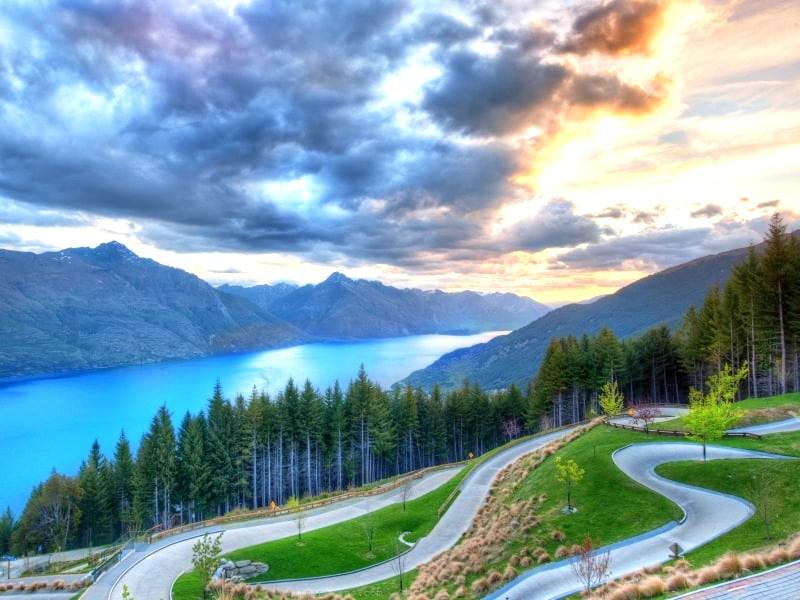 New Zealand Top Sites