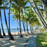 Palm Cove Queensland Australia