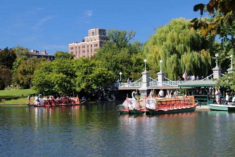 Swan Boats Boston Public Garden