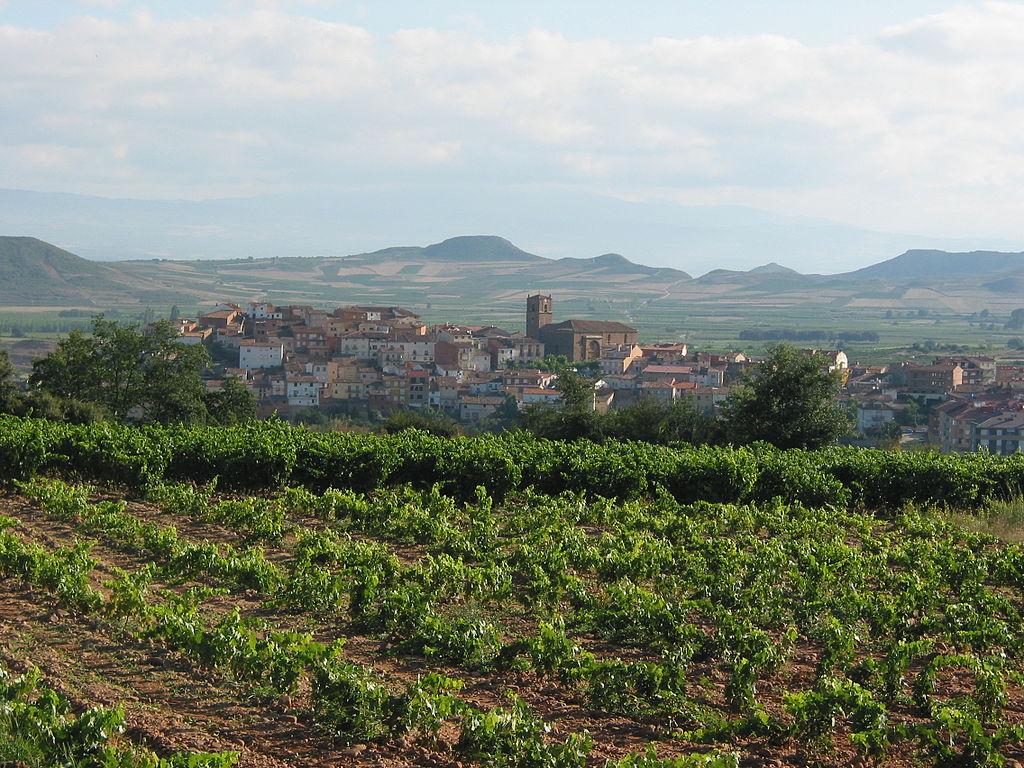 Rioja Wine Region Spain