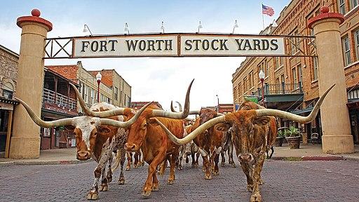 Fort Worth Stock Yards by Briaande