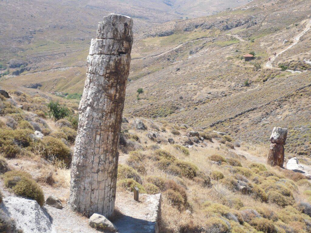 Petrofied Stones Lesbos Greece