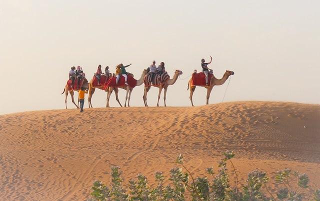 Dubai Desert Excursion