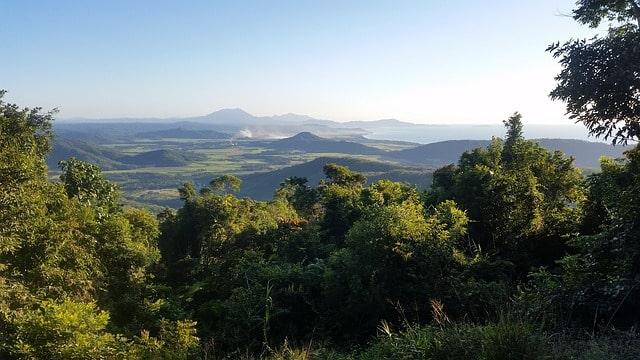 Daintree Forest Australia