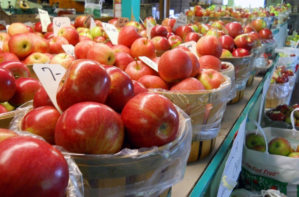 Apple Harvest Festival